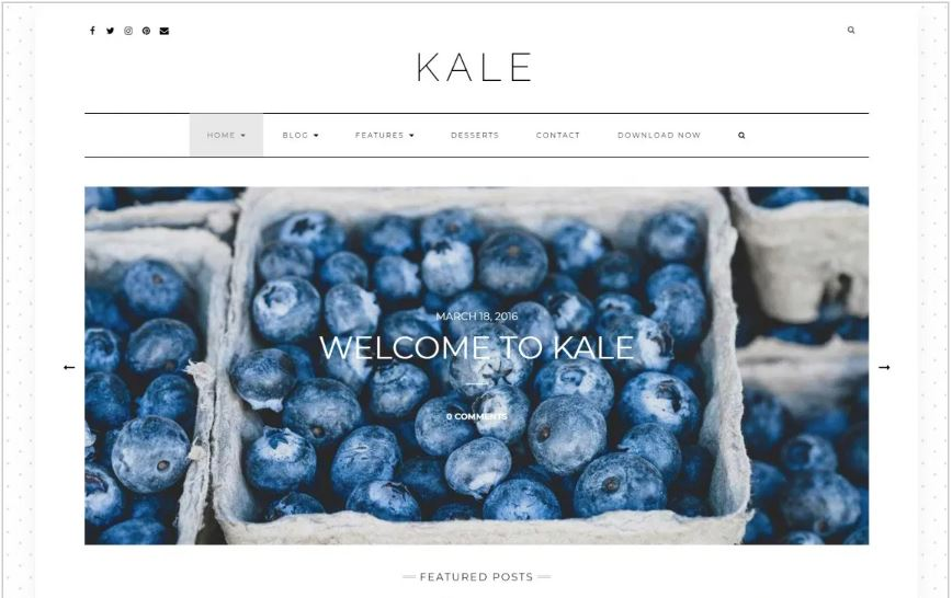 Kale food and restaurant wordpress theme