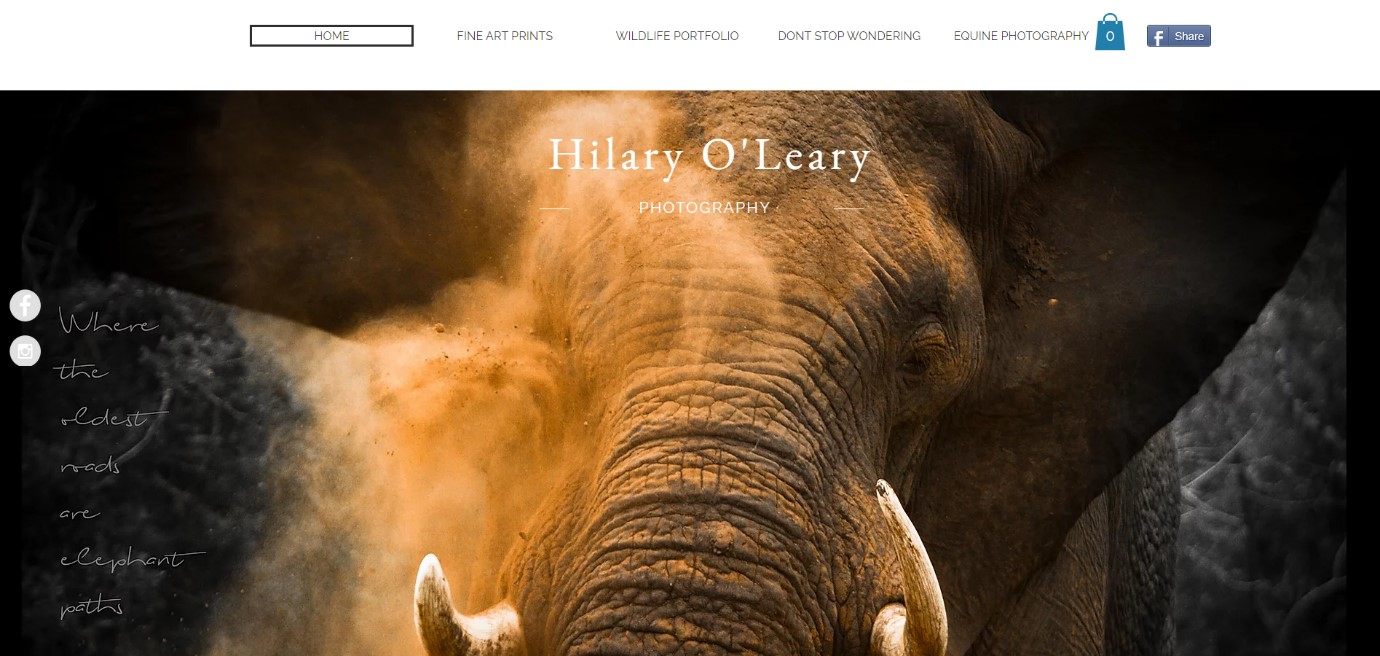 Hilary O'Leary Wix Website Example