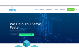 Website design for ThinkSource (US))