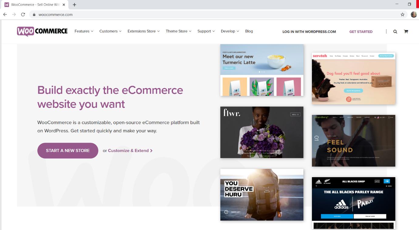 woocommerce, online store wordpress plugin