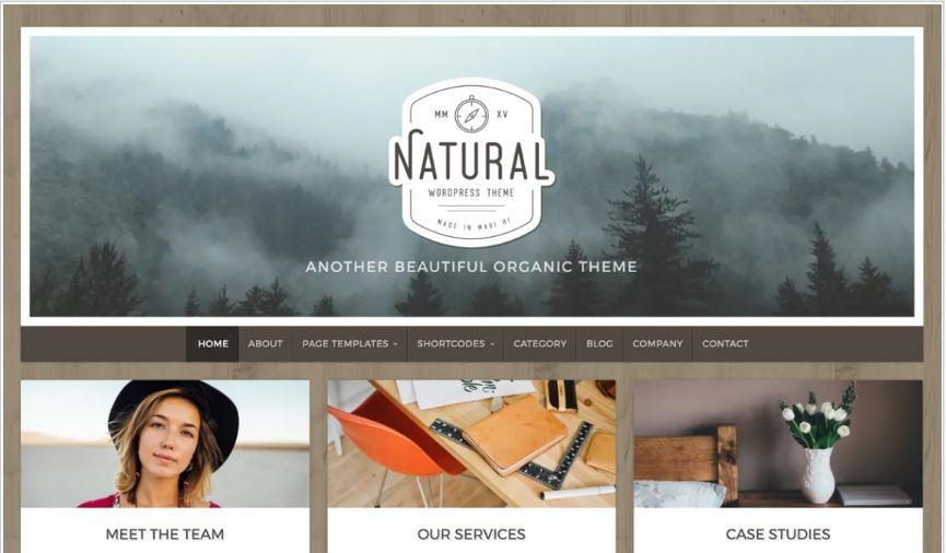 Natural lite free wordpress blog themes