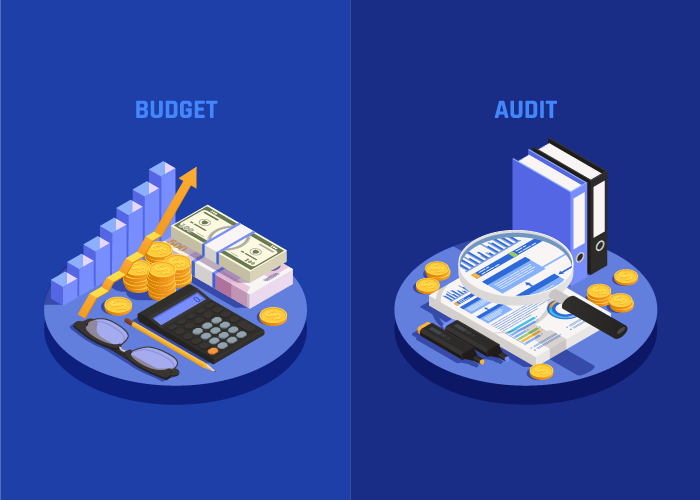 Budgeting and Auditing