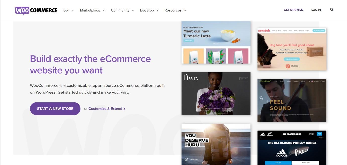 Woo Commerce best wordpress plugins